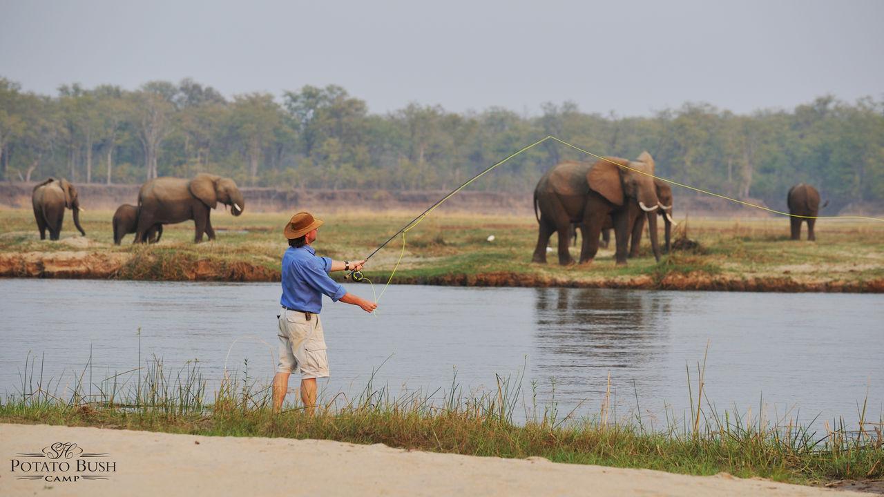 Privéreis Zambia vliegsafari, Luangwa - 11 dagen| Matoke Tours