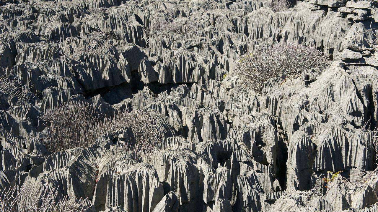 Madagascar excursies en activiteiten - Ankarana Tsingy rotsen