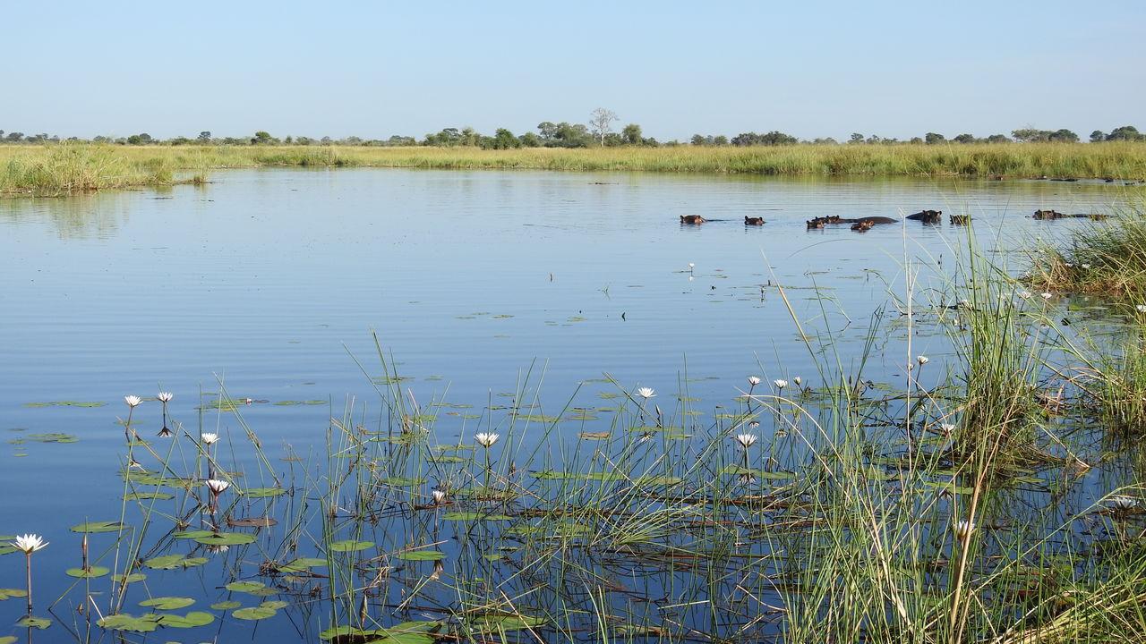 Namibië rondreis met verlengingsopties » Matoke