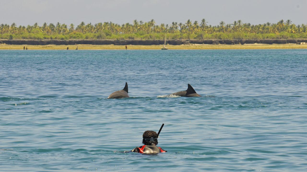 Fanjove Island | onbewoond eiland bij Tanzania | Matoke Tours