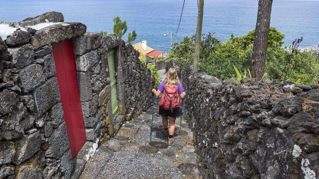 Vakantie Azoren - walvissen spotten Azoren - Matoke Tours