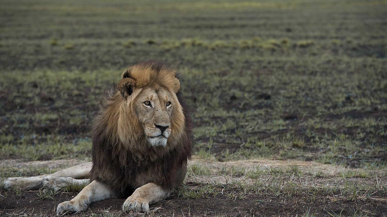 Kafue NP - hoogtepunten - Zambia