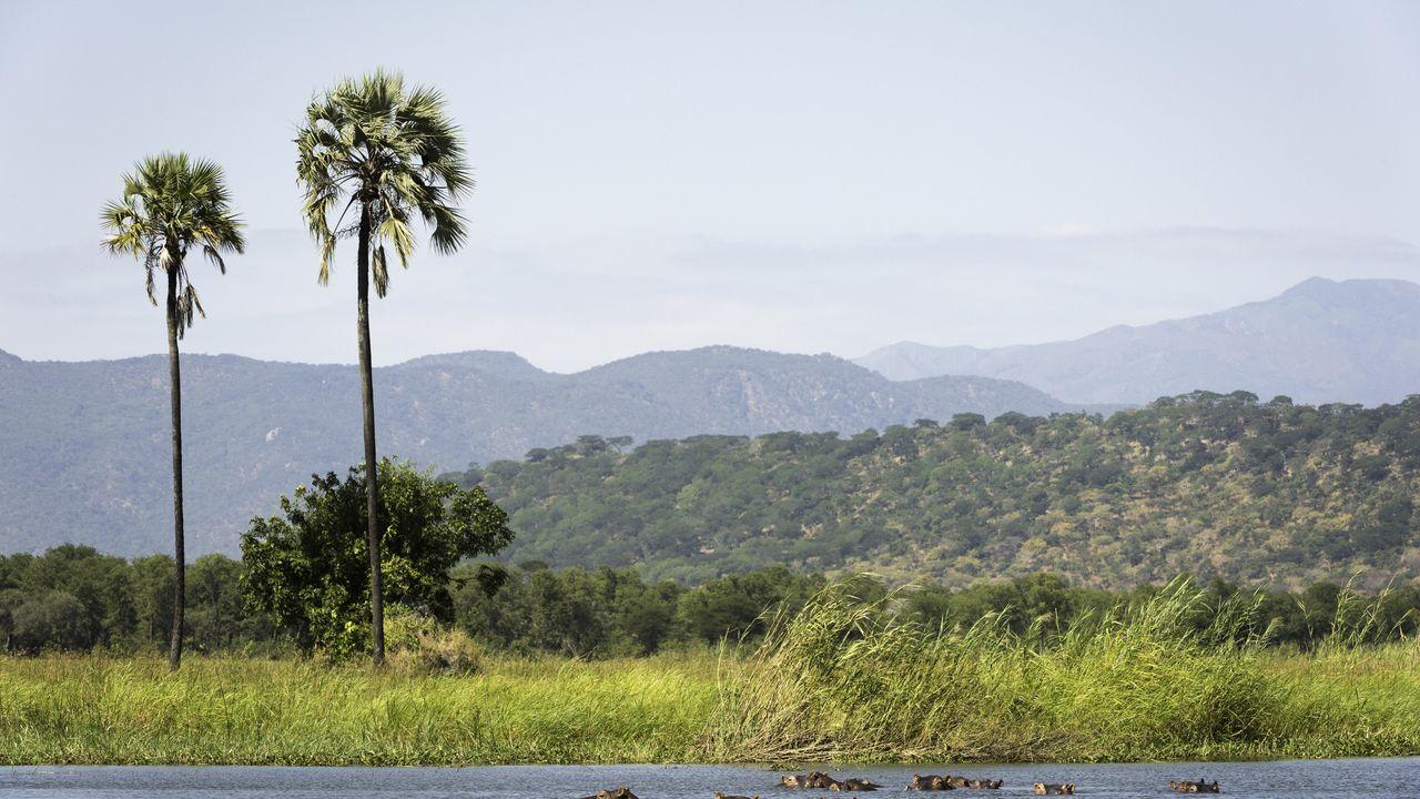 Liwonde NP - hoogtepunten - Malawi