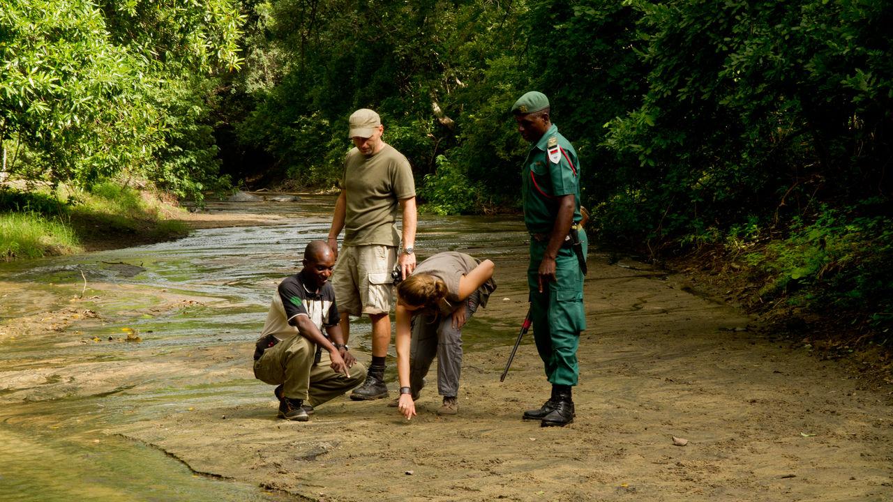 Vakantie Malawi - Safari Malawi reizen | Matoke Tours