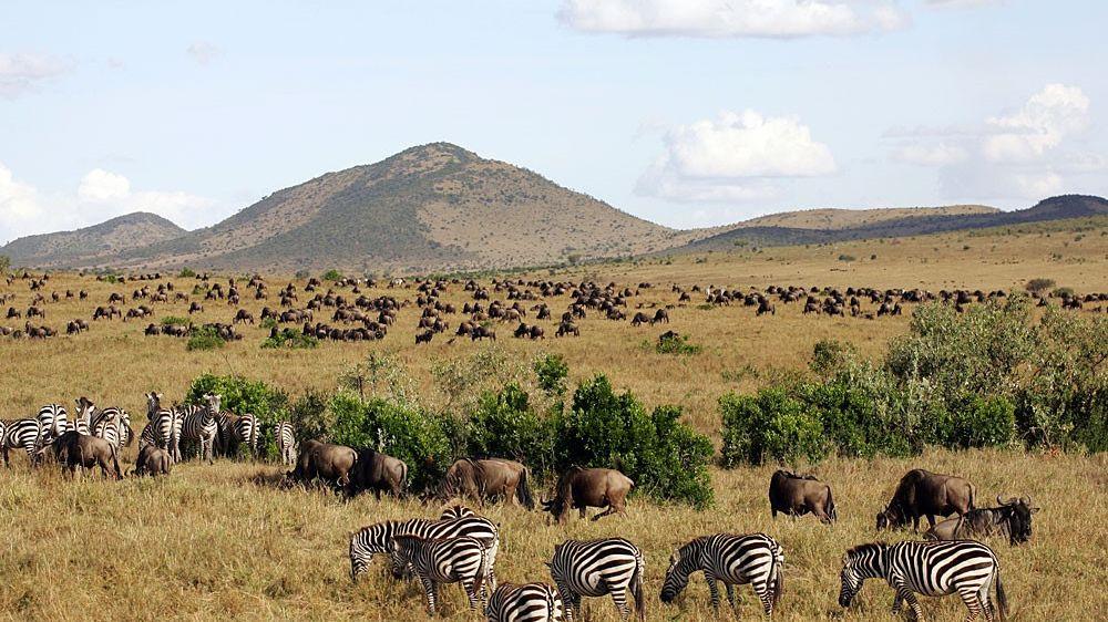 groepsreis Oeganda – hoogtepunten Oeganda - 12 dagen