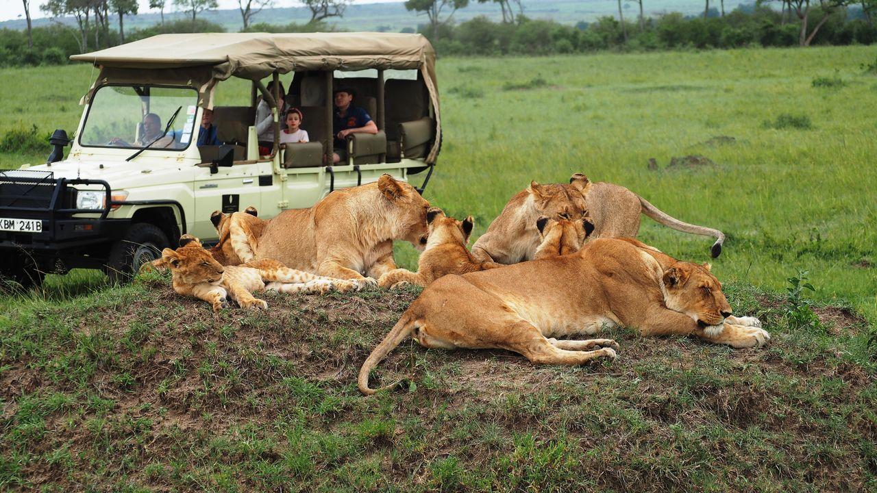 Masai Mara Safari - Bezoek Masai Mara National Park | Matoke Tours