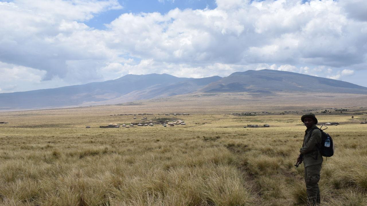 Verlenging Ngorongoro Hooglanden » Matoke