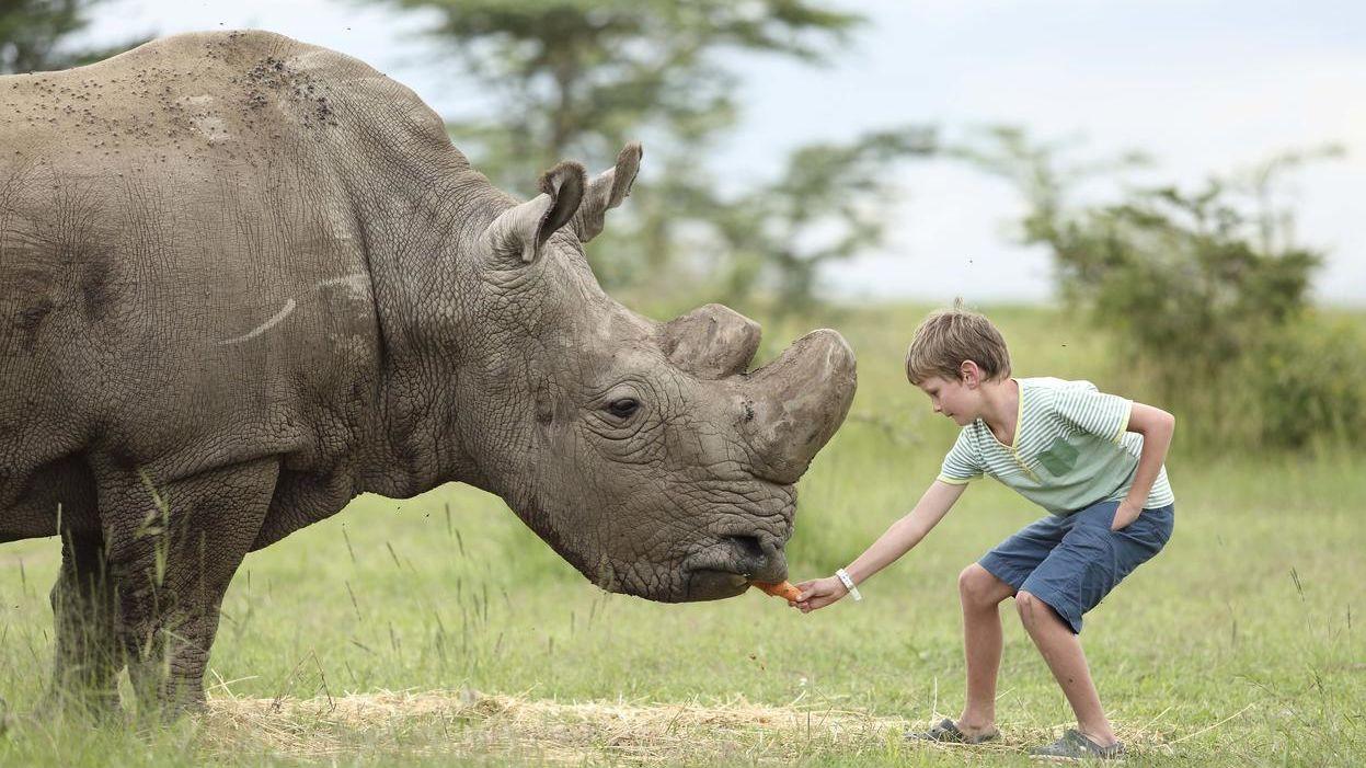 Familiereis Kenia   Naar Kenia met kinderen   Matoke Tours