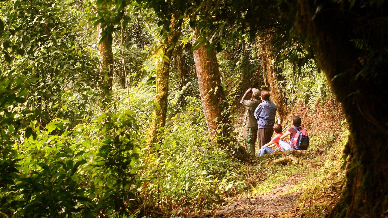 4WD safari voertuigen Rwanda | Matoke Tours