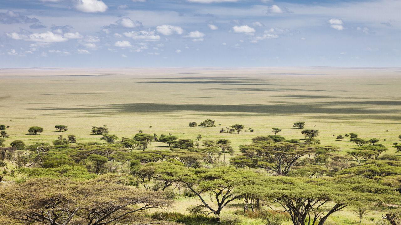 serengeti uitzicht