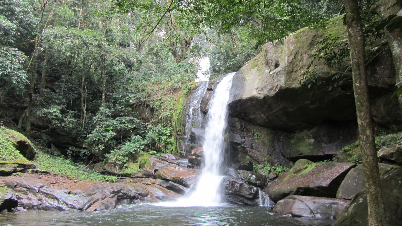 Udzungwa - Udzungwa Mountains - Zuid Tanzania reizen