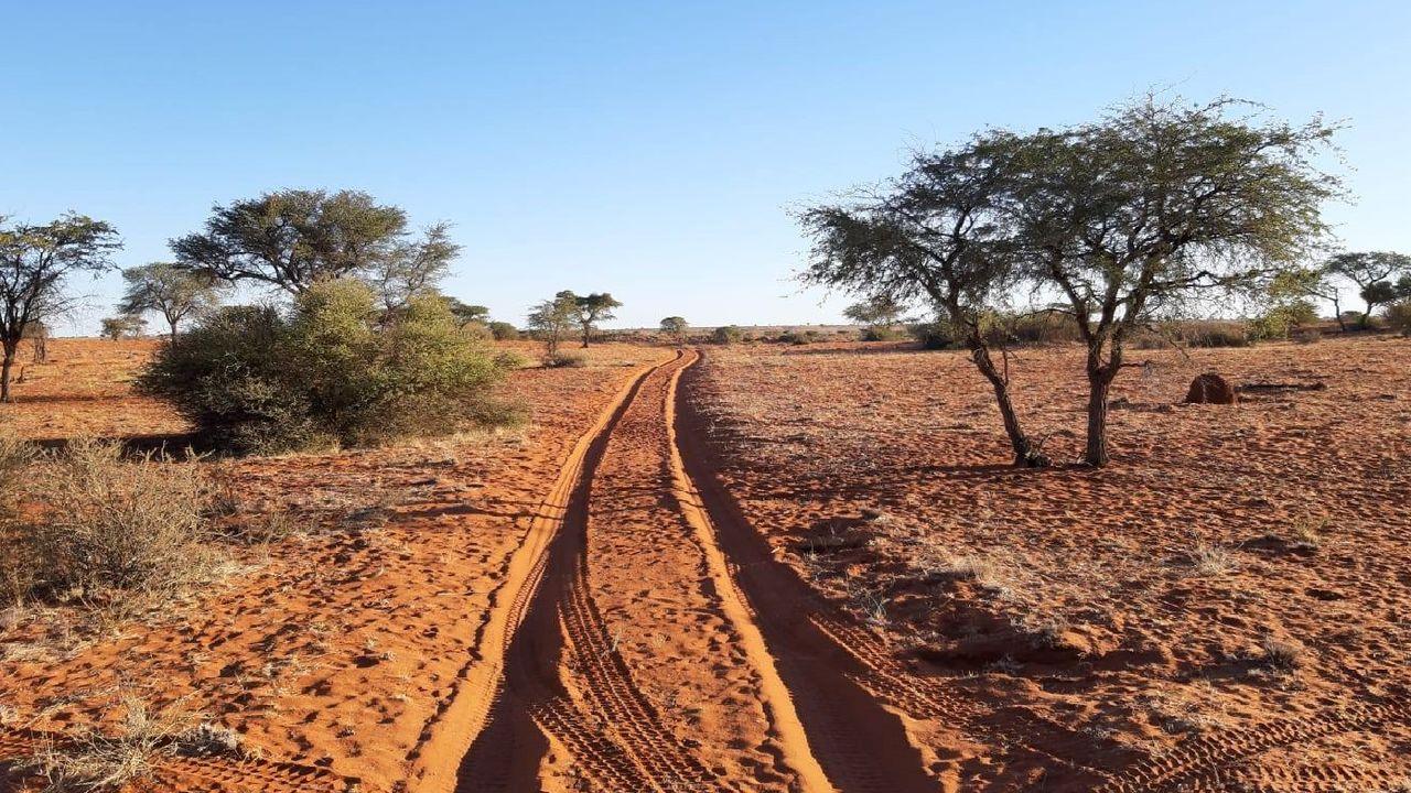 Familiereis Namibie - naar Namibie met kinderen | Matoke Tours